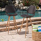Great Deal Furniture Amaya Outdoor Multibrown Wicker Barstools with Brown Wood Finish Metal Legs (Set of 2)