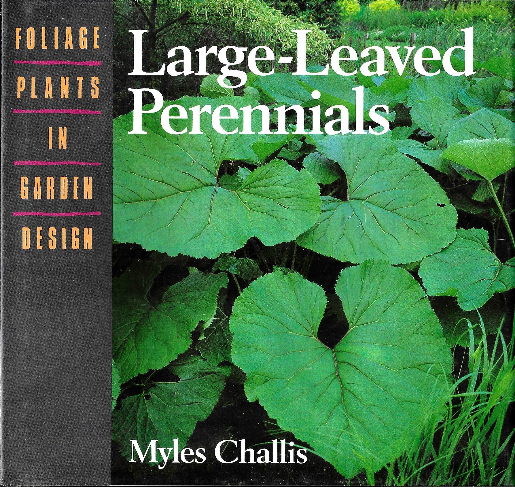 Large Leaved Perennials Foliage Plants In Garden Design Myles
