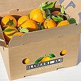 Naranjas de Valencia Selectas. Directas del campo a su mesa . Caja de 10 kilos