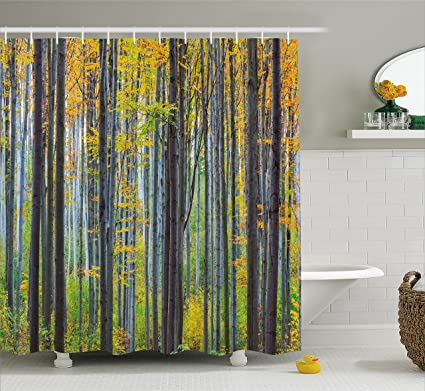 Ambesonne Fall Decorations Shower Curtain Lush Beech Tree With Tall Bodies Wilderness Rural Countryside