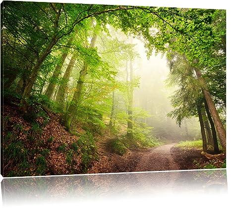 Waldweg Leinwandbild Wanddeko Kunstdruck