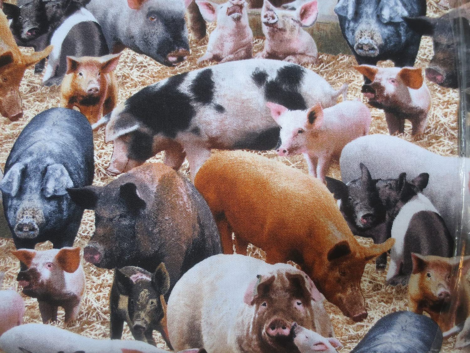Hogs And Pigs And More Hogs and Pigs Cotton Fabric elizabeth studio 4336996033