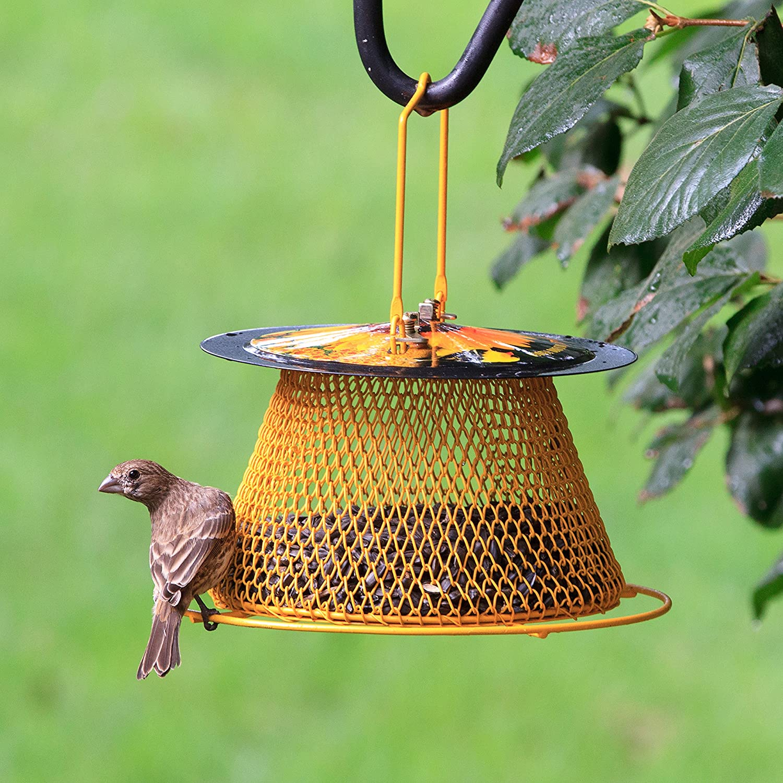 decorative bird magnolia feeder metal hanging feeders yellow buy