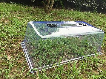 Amazoncom Mr Garden Plastic Protective Garden Cloche Plant