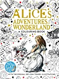 The Macmillan Alice Colouring Book