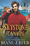 Skystone Canyon (Iron Feather Brothers Series Book 2)