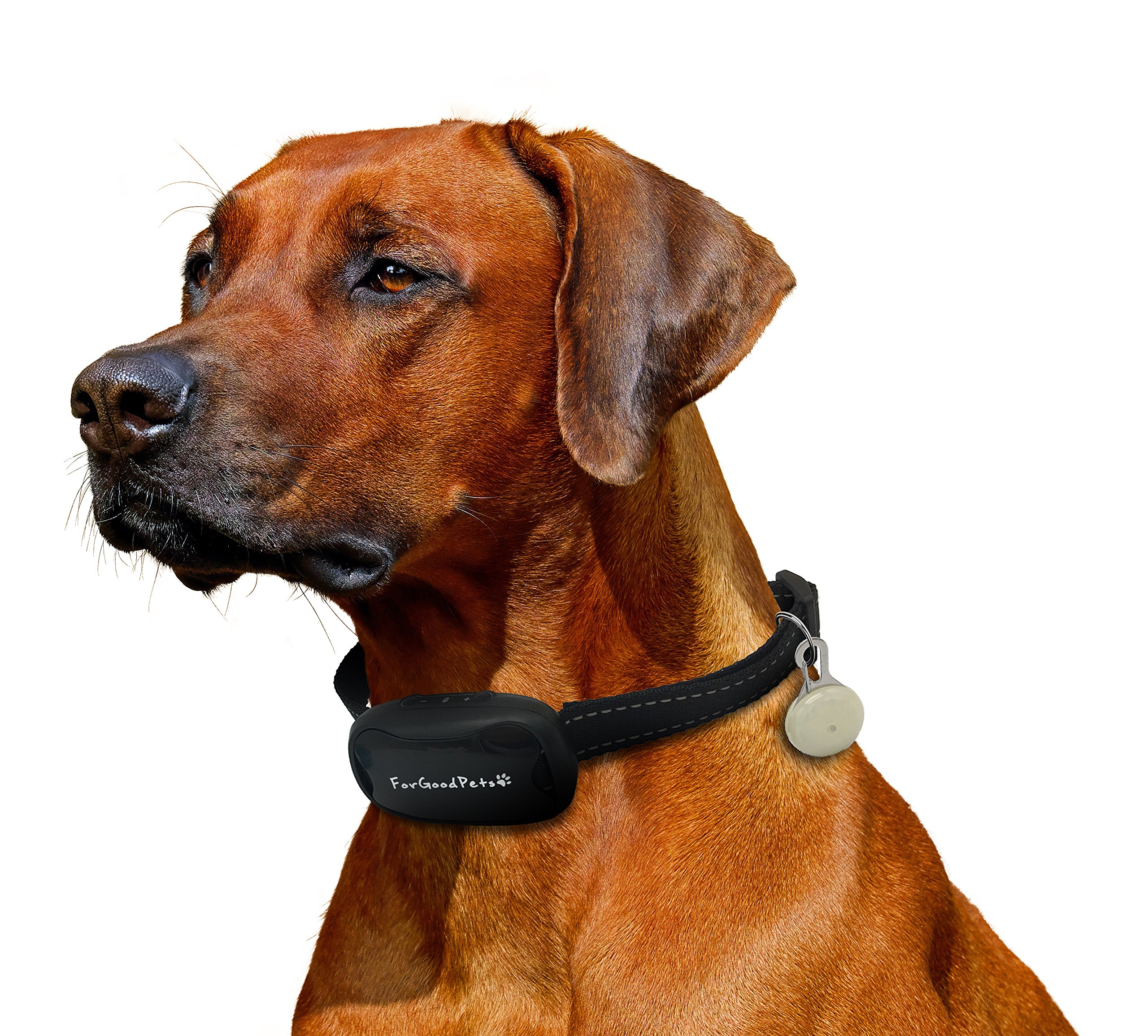 ForGoodPets Collier Anti-Aboiement - Collier équipé d'une lumière LED, 7 niveaux de sensibilité, SON et VIBRATION seulement. Collier de dressage pour petits et grands chiens, léger et ajustable. product image
