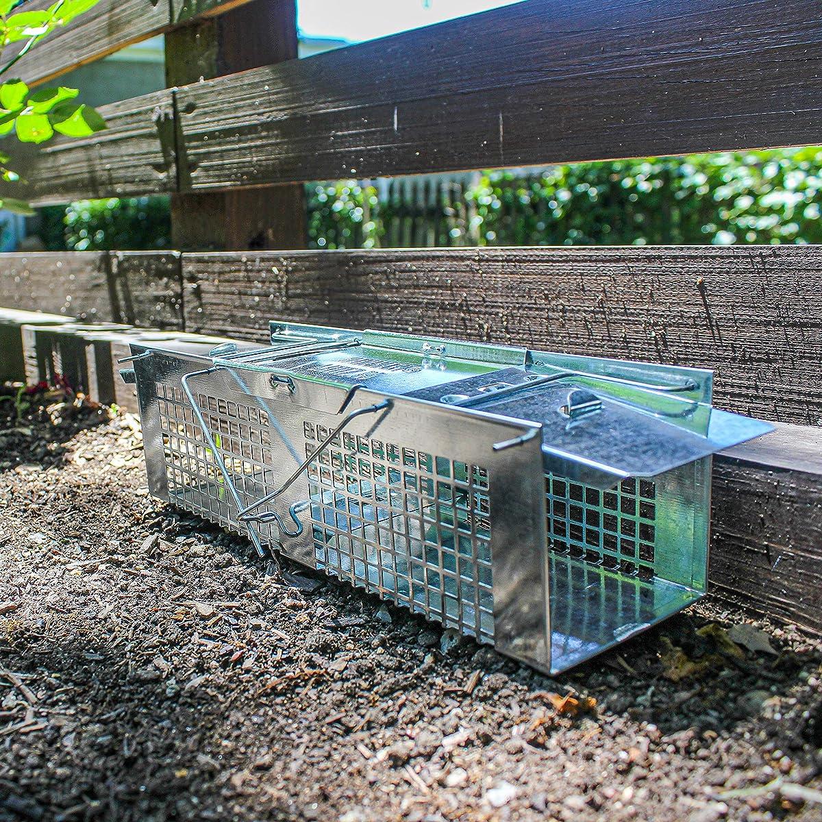 Havahart Mouse Trap