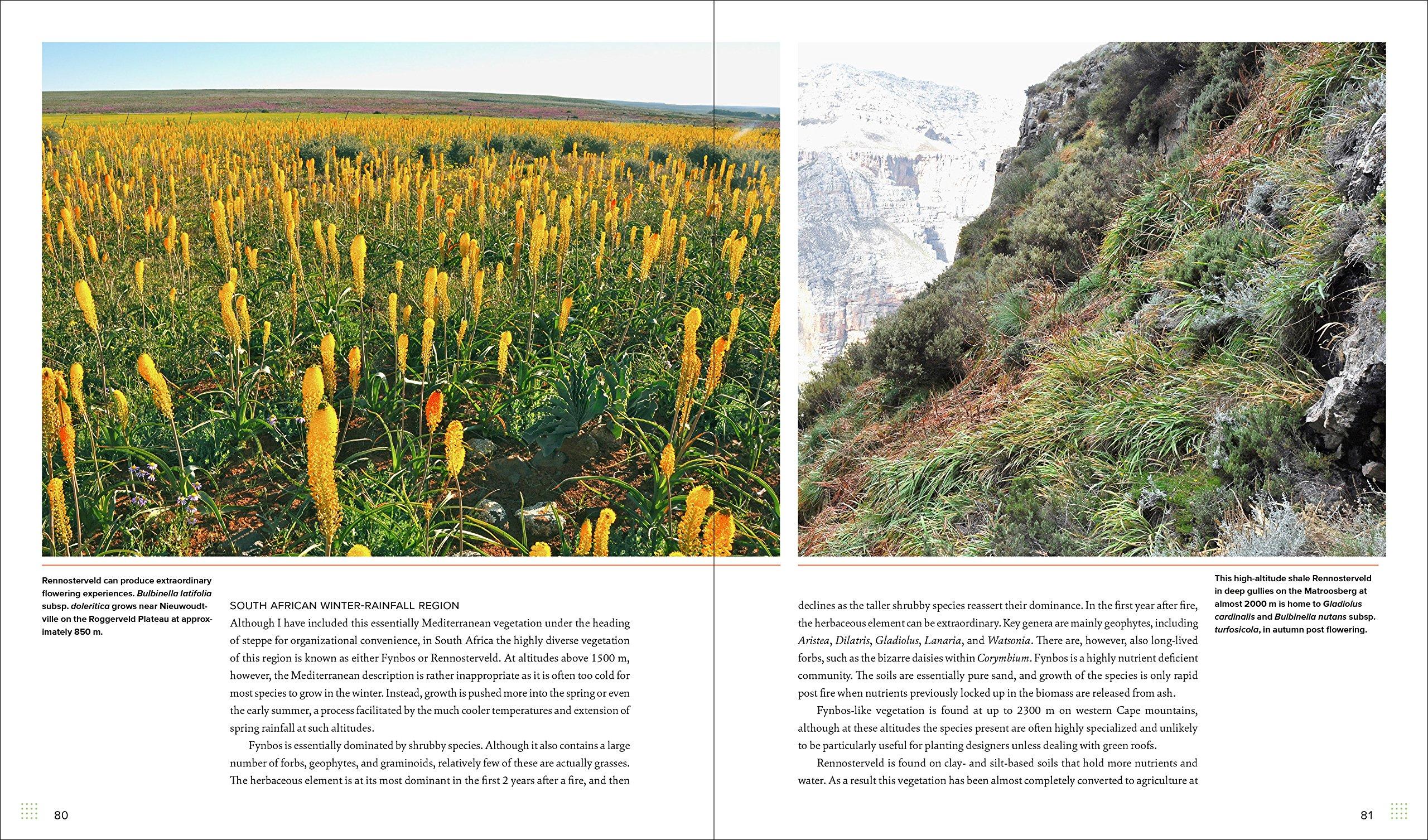 Sowing Beauty: Amazon.es: James Hitchmough: Libros en idiomas extranjeros