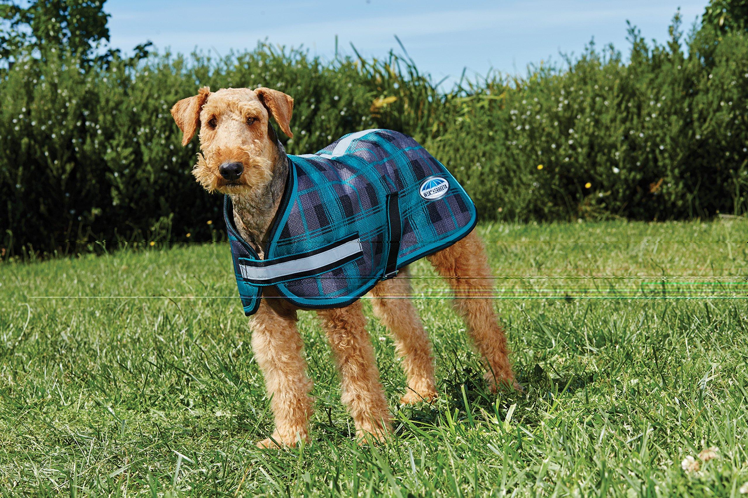 Weatherbeeta Parka 1200D Dog Coat (14'', Black/Teal Plaid)