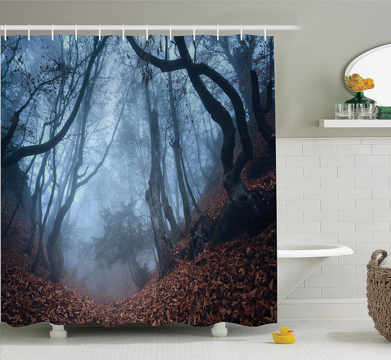 Amazon.com: Ambesonne Rustic Barn Decor Shower Curtain Set, Daisy on ...
