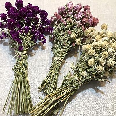 Ramo de flores secas perpetuina. RAMO SECO NATURAL. flores naturales. flores secas