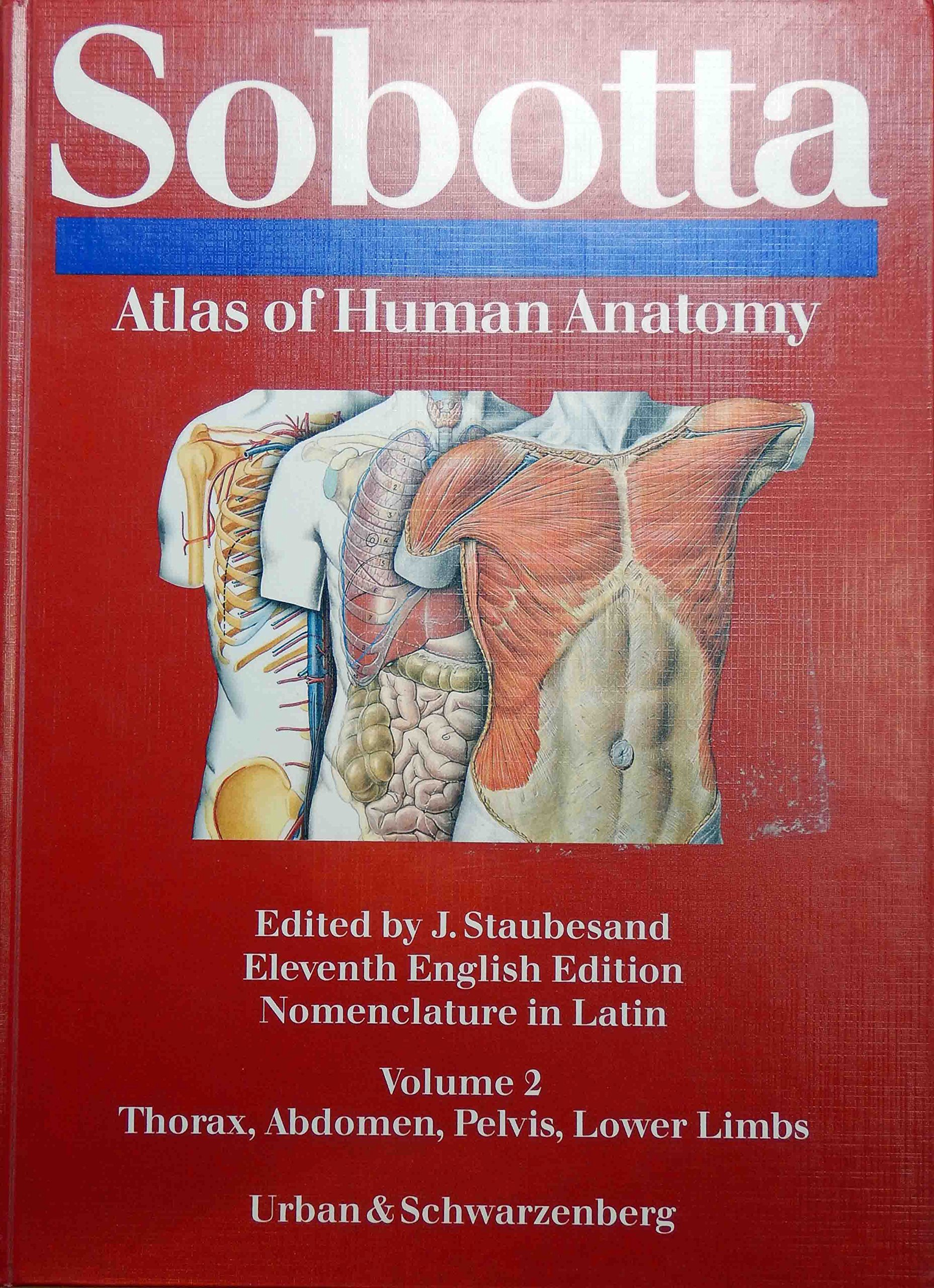 Sobottas Atlas Of Human Anatomy Volume 2 Thorax Abdomen Pelvis