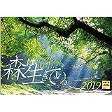 森は生きている 2019年 カレンダー 壁掛け SB-4 (使用サイズ 594x420mm) 風景