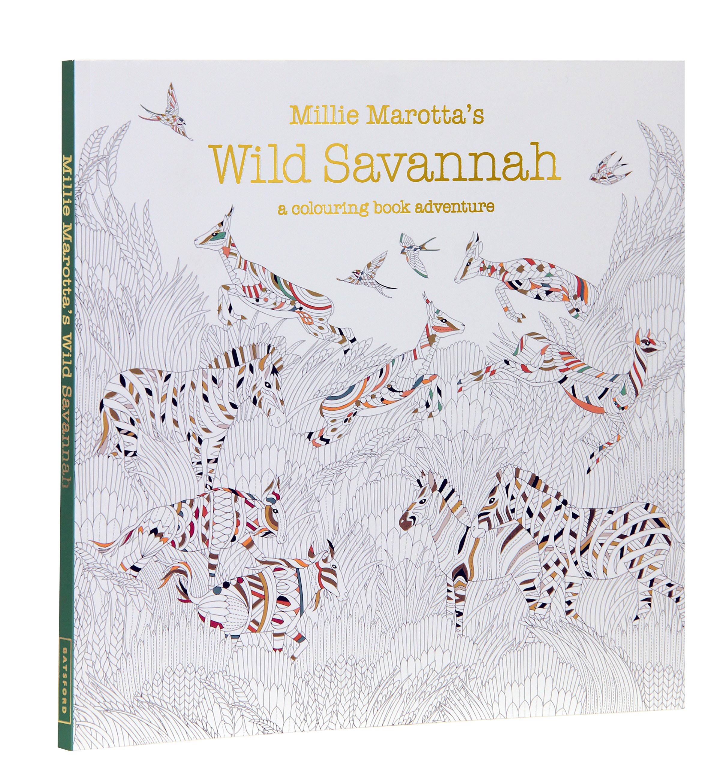 Millie Marottas Wild Savannah A Colouring Book Adventure Books Amazoncouk Marotta 9781849943284