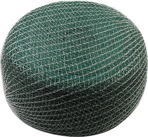 Meister-Teichnetz
