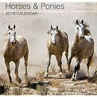 2016 Calendar: Horses & Ponies