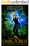 The Dark Forest: The Revelations of Oriceran (Soul Stone Mage Book 2)