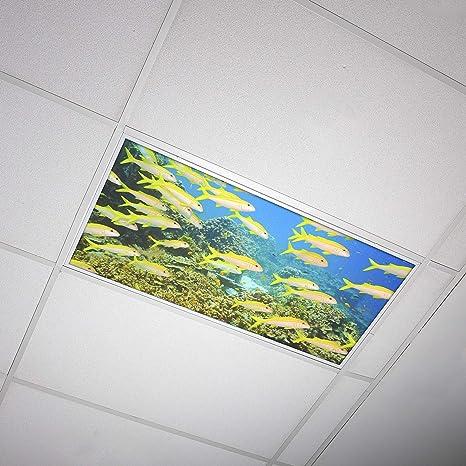 Octo Lights 006 Office Flower Home Classroom Fluorescent Light Covers