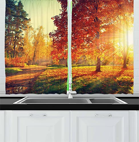 Ambesonne Fall Kitchen Curtains, Vibrant Misty Day in Forest Sun Rays Trees Foliage Fallen Leaves Calm View, Window Drapes 2 Panel Set for Kitchen Cafe Decor, 55 X 39 , Orange Yellow Green