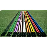 "Golfnsticks ""The Top Rated"" Golf Alignment Sticks / Amazing Team Color Options / Made in the USA! / Fast Free Shipping"