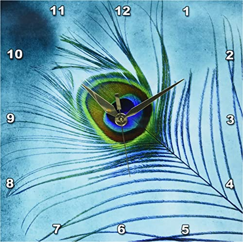 3dRose DPP_211236_1 Peacock Feather on Turquoise Background Wall Clock, 10 x 10