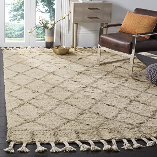 Safavieh Casablanca Shag Collection CSB725B Southwestern Ivory and Light Grey Premium Wool Cotton Area Rug 8' x 10'