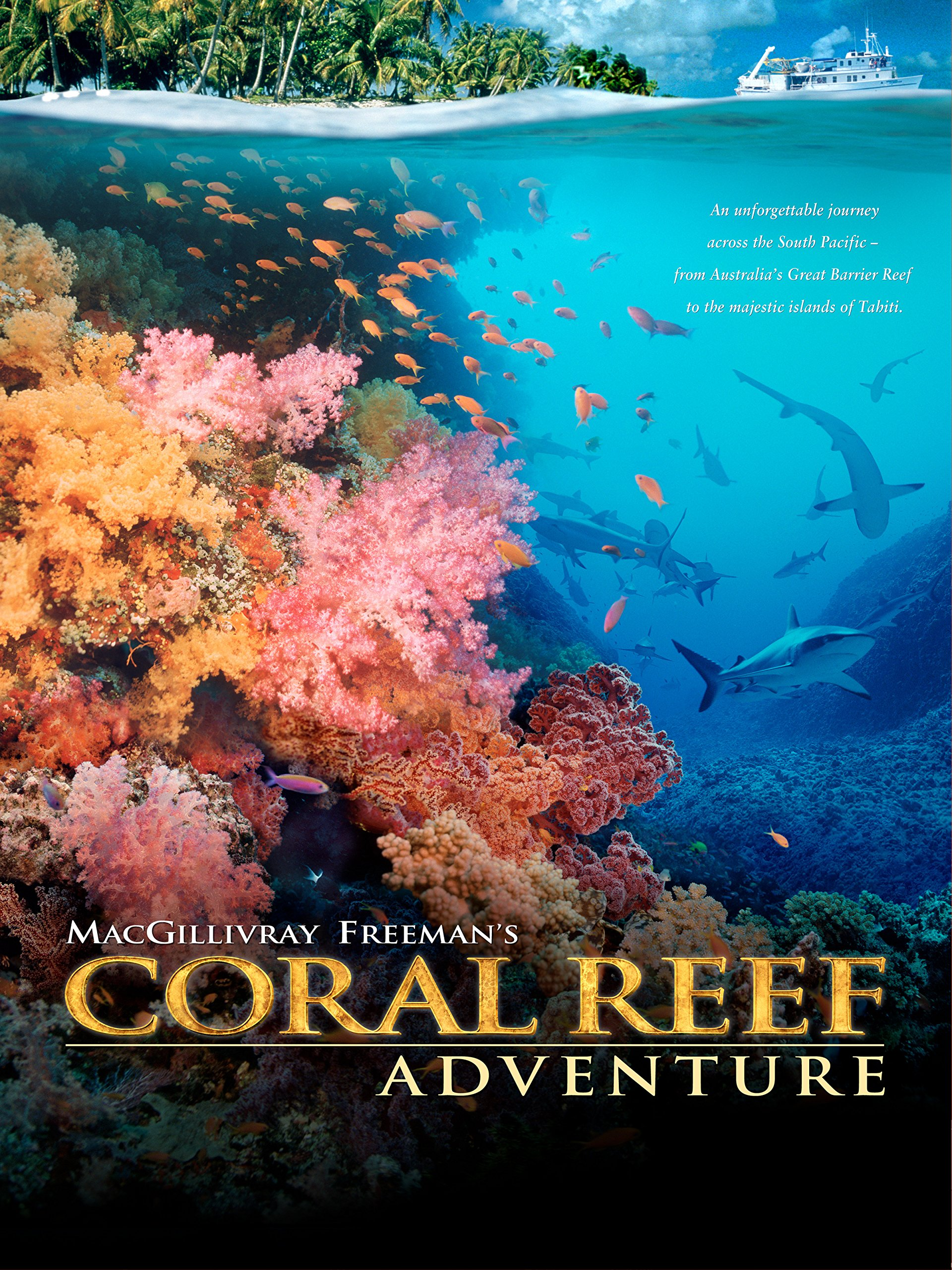Amazon coral reef adventure liam neeson howard hall amazon coral reef adventure liam neeson howard hall michele hall jean michel cousteau amazon digital services llc sciox Image collections