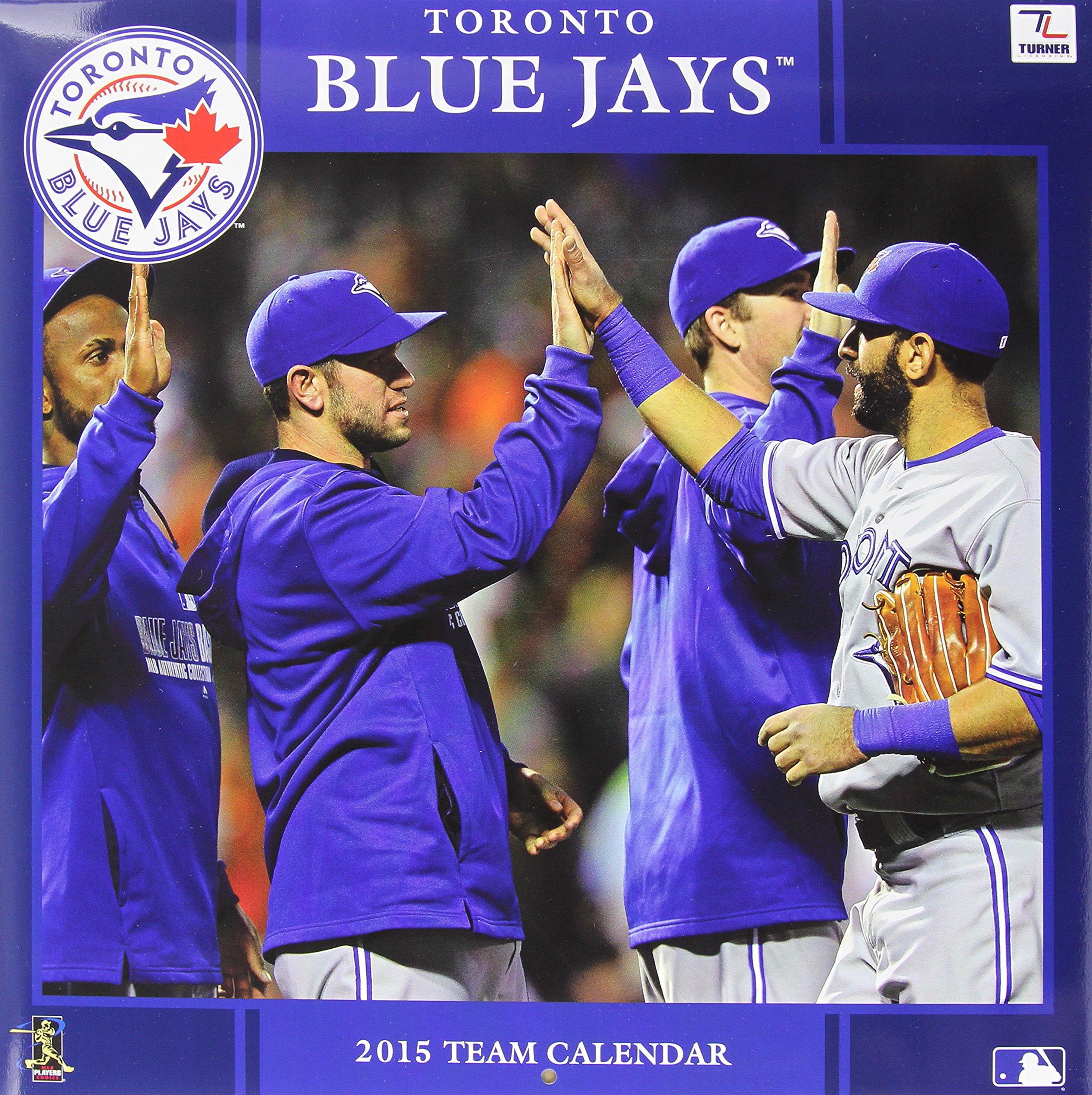 Download Toronto Blue Jays 2015 Team Calendar ebook