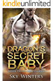 Dragon's Secret Baby (Silver Talon Mercenaries Book 1)