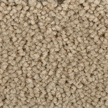 verschiedene L/ängen BODENMEISTER BM72182 Teppichboden Auslegware Meterware Hochflor Shaggy Langflor Velour wei/ß beige 400 cm und 500 cm breit 8 x 5 m Variante