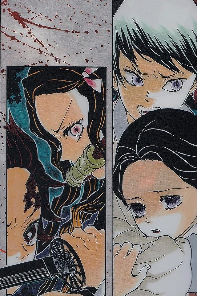 鬼滅の刃 竈門炭治郎,竈門禰󠄀豆子 , 愈史郎(ゆしろう),珠世(たまよ) iPhone(640×960)壁紙画像