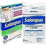 Salonpas Pain Relieving Patch Large, 6 Count