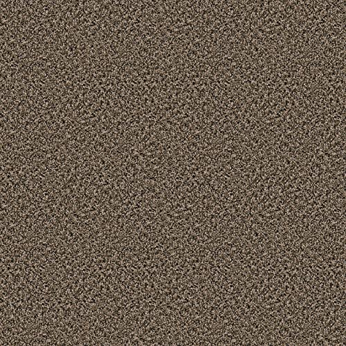 Dream Weaver Oval 9 x12 Indoor Area Rug – Toffee 30oz – Plush Textured Carpet for Residential or Commercial use with Premium Bound Polyester Edges.