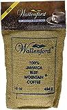 16oz Roasted and Ground 100% Jamaica Blue Mountain Coffee