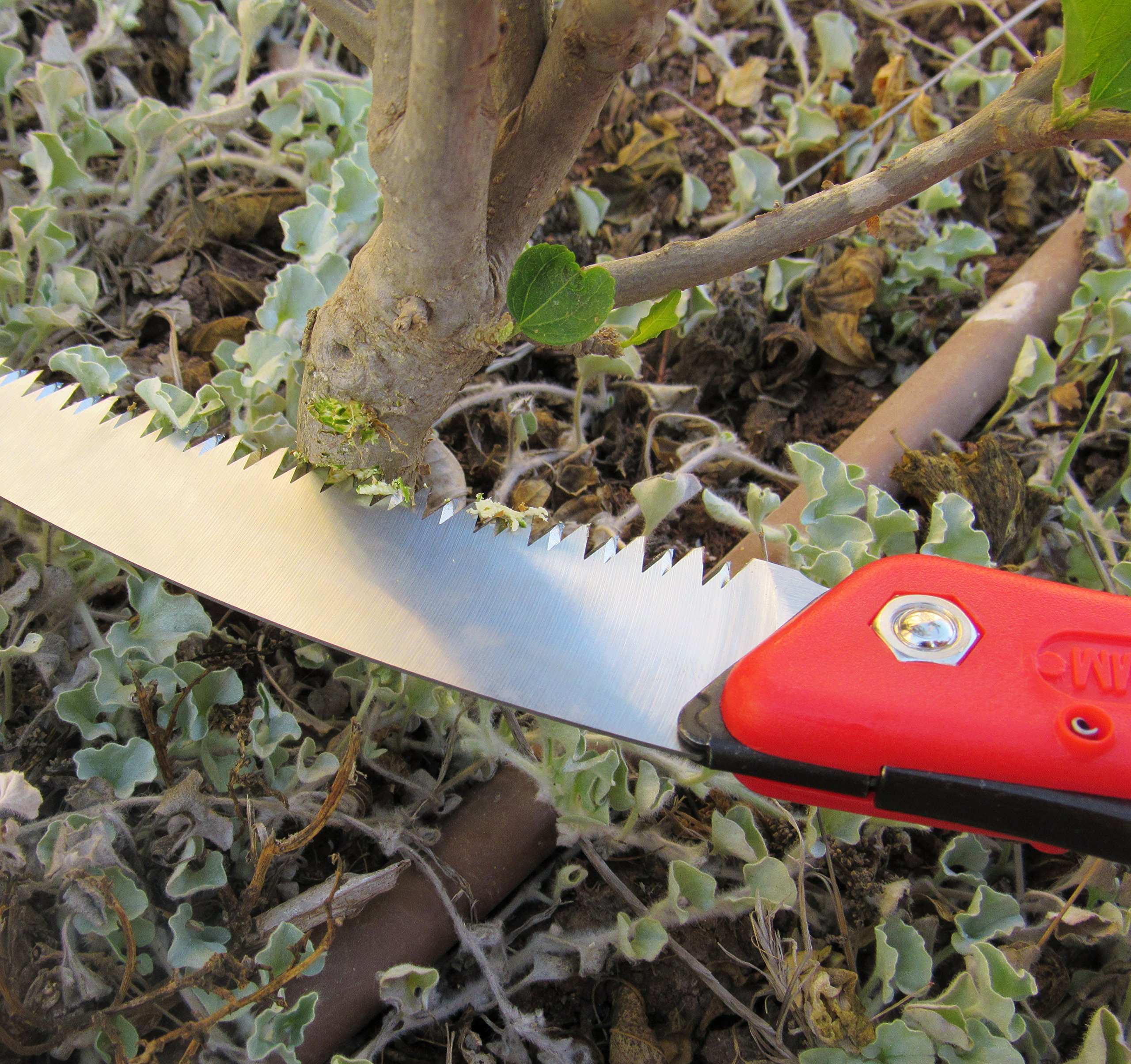 TABOR TOOLS TTS25A Folding Saw with Curved Blade and Rugged Grip Handle, Hand Saw for Pruning Trees, Trimming Branches, Camping, Clearing Forest Trails. by TABOR TOOLS (Image #8)