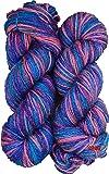 Vardhman M.G Tango Multi Voilet Wool Hand Knitting Wool,Needle Acrylic Knitting Yarn Thread Dyed 200 Gm
