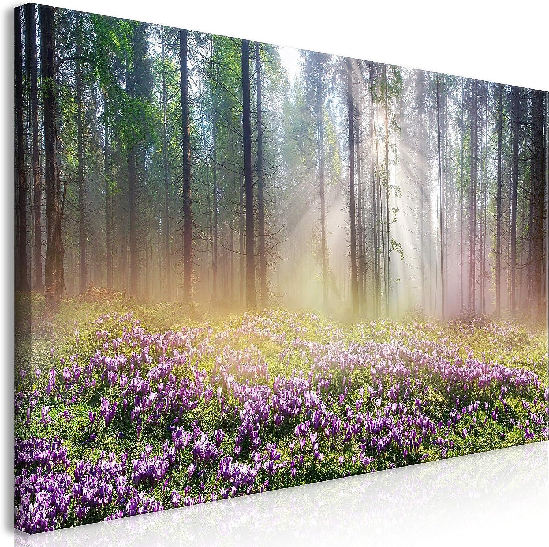 murando Cuadro en Lienzo Bosque Niebla 120x60 cm 1 Parte Impresión en Material Tejido no Tejido Impresión Artística Imagen Gráfica Decoracion de Pared Prado Flores Violeta c-B-0373-b-a
