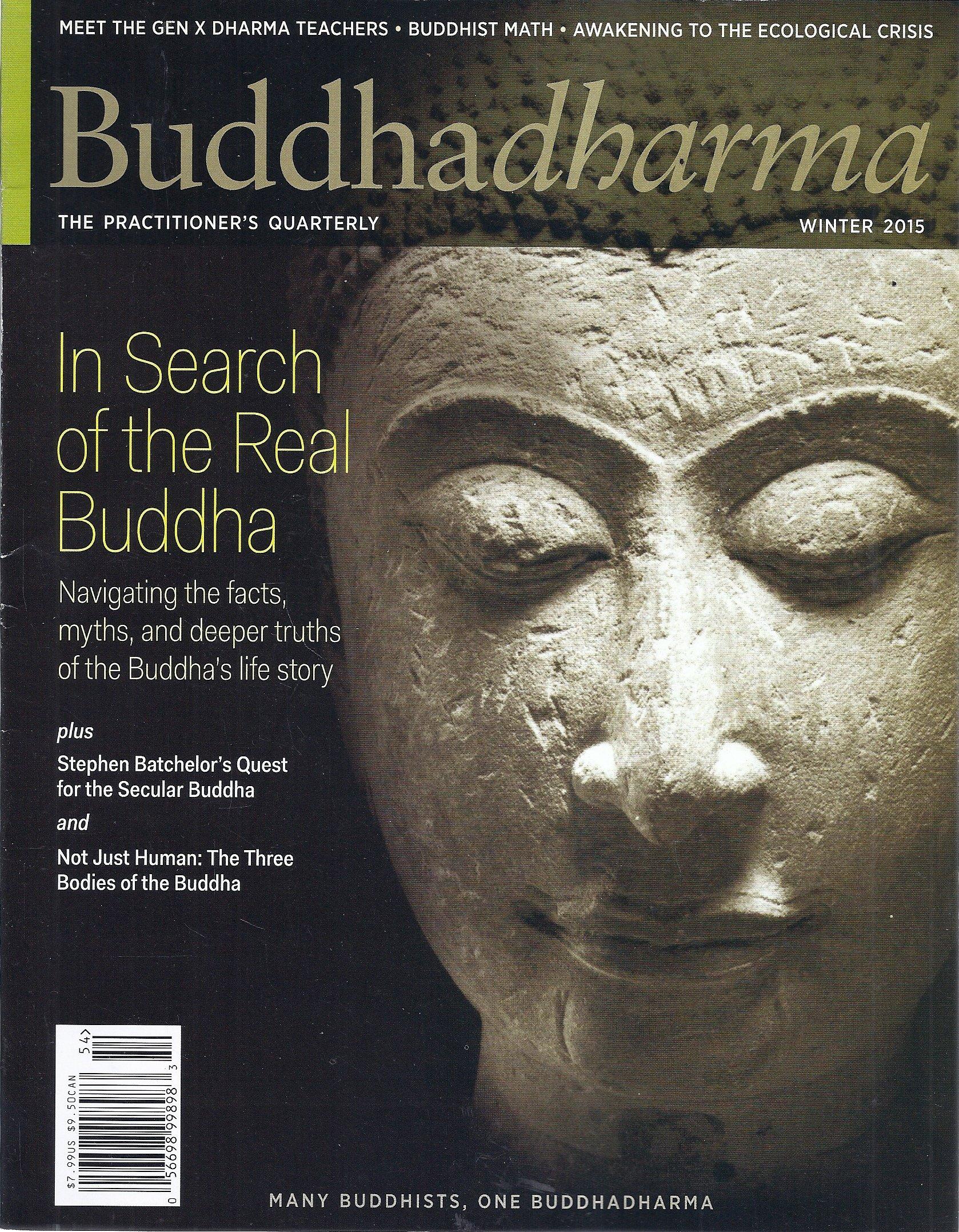 Download Buddhadharma Magazine (Winter 2015 - In Search Of The Real Buddha) ebook