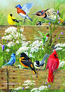 Buffalo Games - Hautman Brothers - Songbird Menagerie - 300 LARGE Piece Jigsaw Puzzle, 21-1/4inx15in