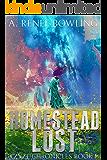 Homestead Lost (Ezyze Chronicles Book 1)