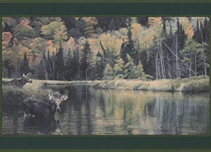 Animals In The Forest Deer Bear Racoon Nature Wallpaper Border Retro
