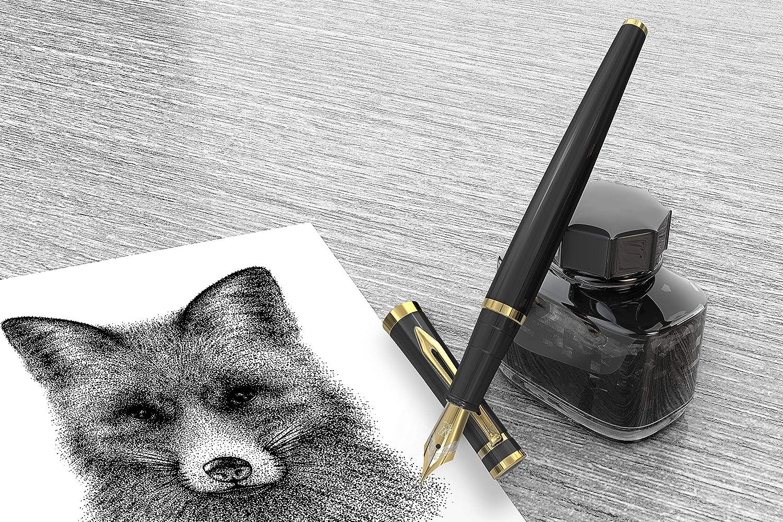 Edici/ón ejecutiva limitada Erudite - NEGRO Y ORO Set de regalo Wordsworth /& Black Incluye cartuchos de tinta convertidor de tinta y convertidor de recarga de tinta GRATIS - Plum/ín mediano