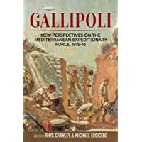 Gallipoli: New Perspectives On The Mediterranean Expeditionary Force, 1915-16 (Wolverhampton Military Studies)