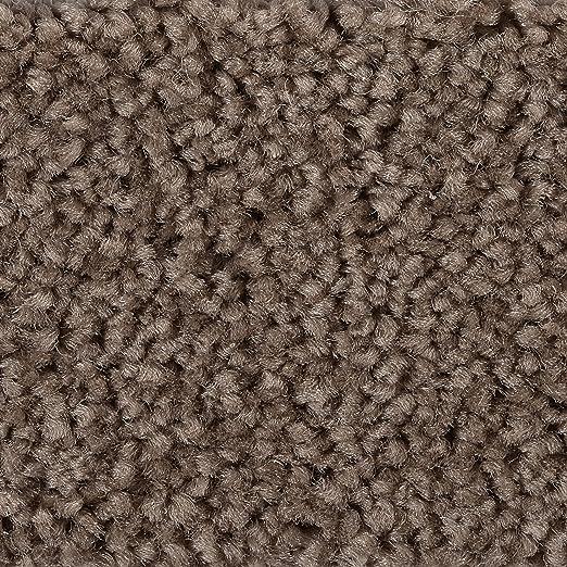 verschiedene L/ängen Variante 4 x 4 m BODENMEISTER BM72182 Teppichboden Auslegware Meterware Hochflor Shaggy Langflor Velour grau 400 cm und 500 cm breit