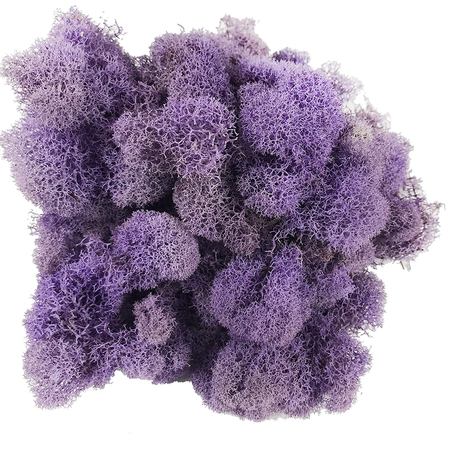 Pack of 2.5oz Purple Reindeer Moss Preserved Floral Moss