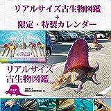 【Amazon.co.jp 限定】特製カレンダー付(数量限定)『リアルサイズ古生物図鑑 古生代編』