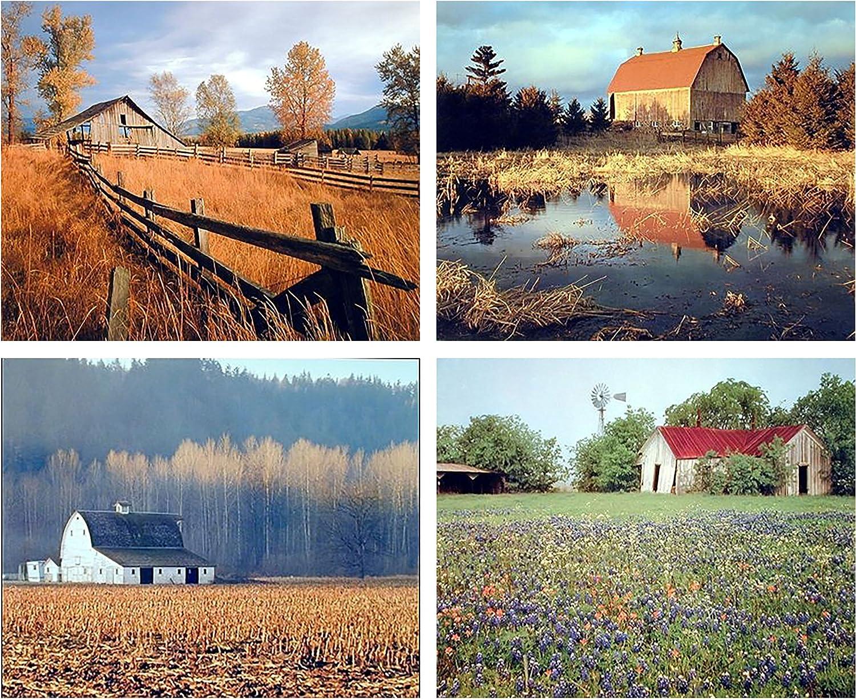 Old Barn Field Tree Landscape Flower Scenery 16x20 Four Set Wall Decor Art Print Poster