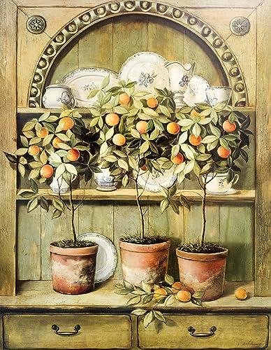 Amazon.com: Les Oranges et la Porcelaine: Fabrice de Villeneuve ...