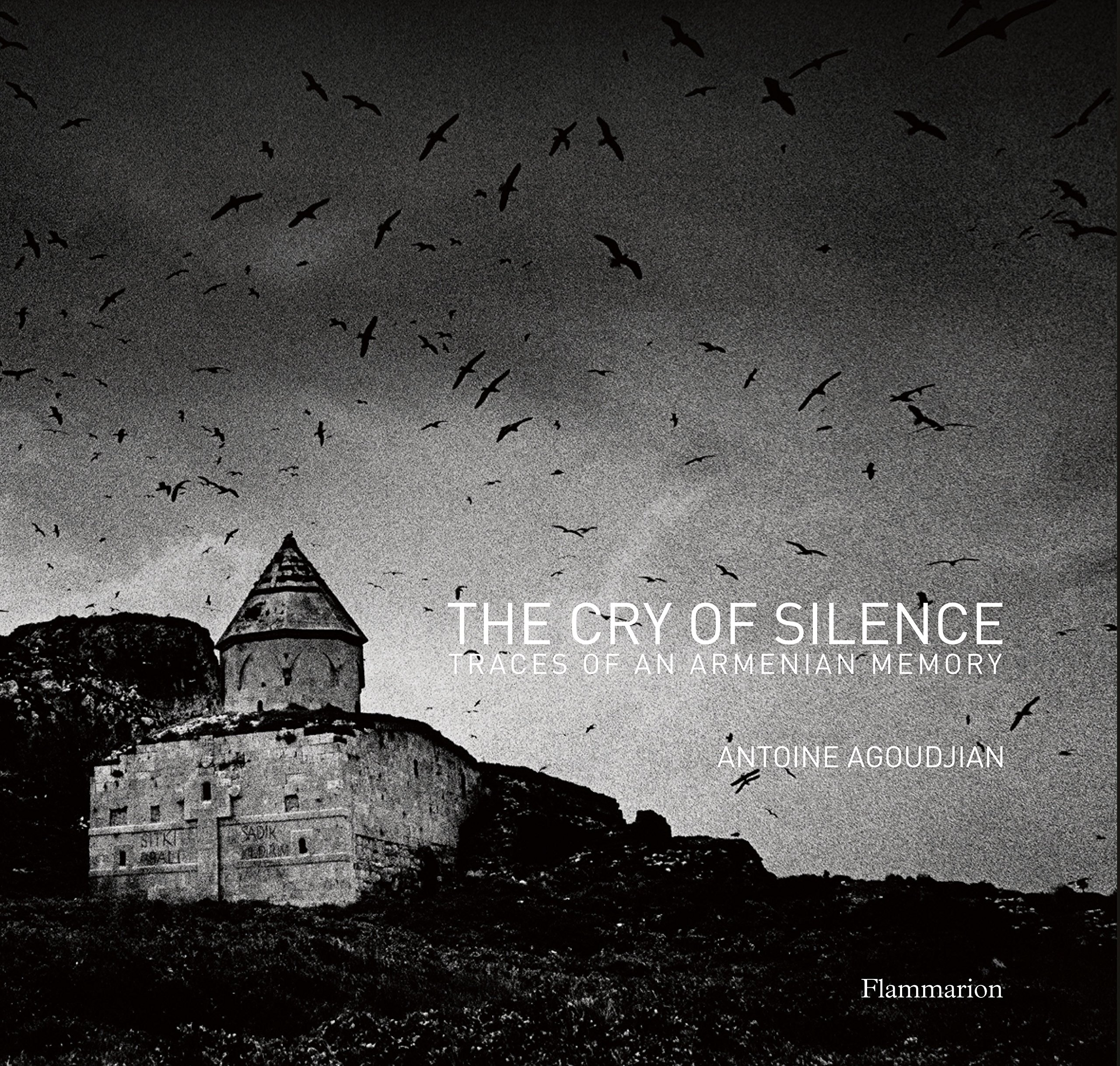 Read Online The Cry of Silence: Traces of An Armenian Memory ebook